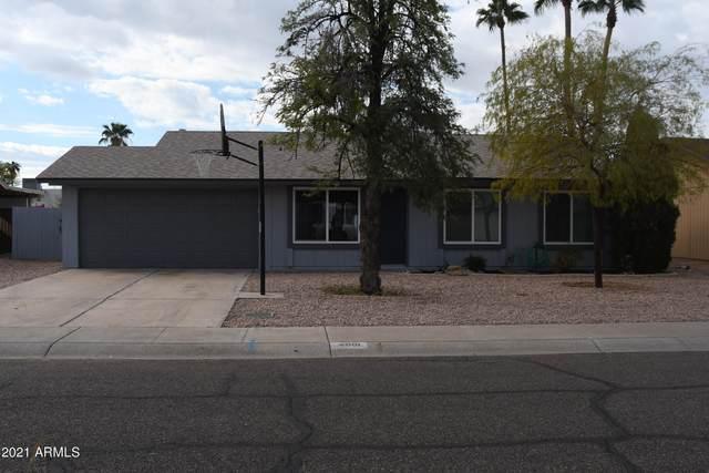 4061 E Aster Drive, Phoenix, AZ 85032 (MLS #6184829) :: RE/MAX Desert Showcase