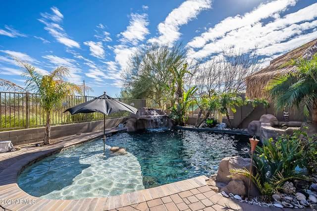 27917 N 64TH Lane, Phoenix, AZ 85083 (MLS #6184873) :: neXGen Real Estate