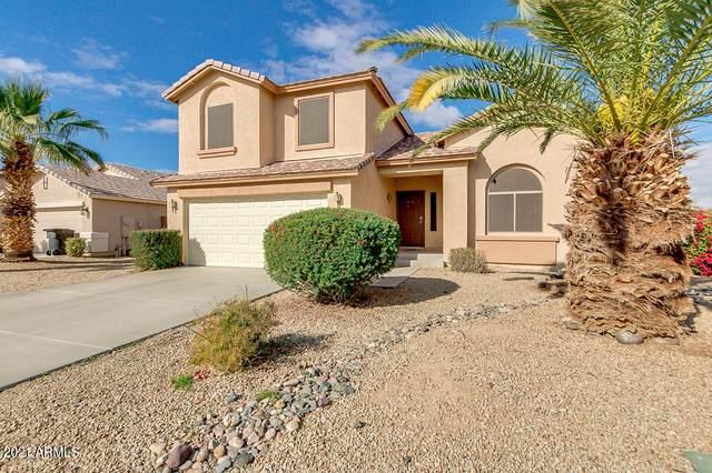 12602 W Catalina Drive, Avondale, AZ 85392 (MLS #6184879) :: The Dobbins Team