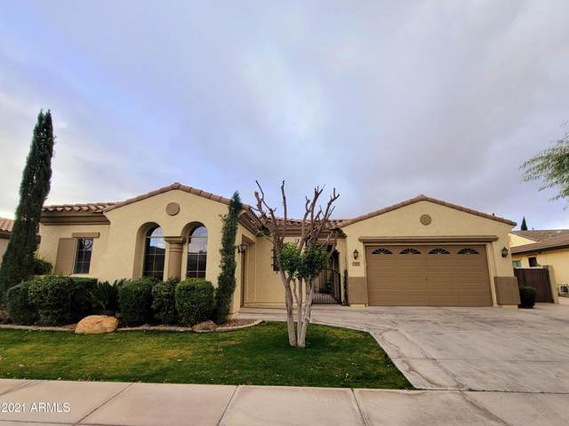 3369 E Goldfinch Way, Chandler, AZ 85286 (MLS #6184880) :: The Everest Team at eXp Realty