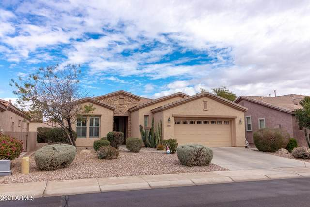 4082 E Rakestraw Lane, Gilbert, AZ 85298 (MLS #6185017) :: The Dobbins Team