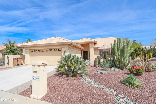 9226 E Crystal Drive, Sun Lakes, AZ 85248 (MLS #6185061) :: Executive Realty Advisors