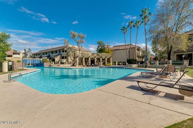 1331 W Baseline Road #338, Mesa, AZ 85202 (MLS #6185093) :: Maison DeBlanc Real Estate