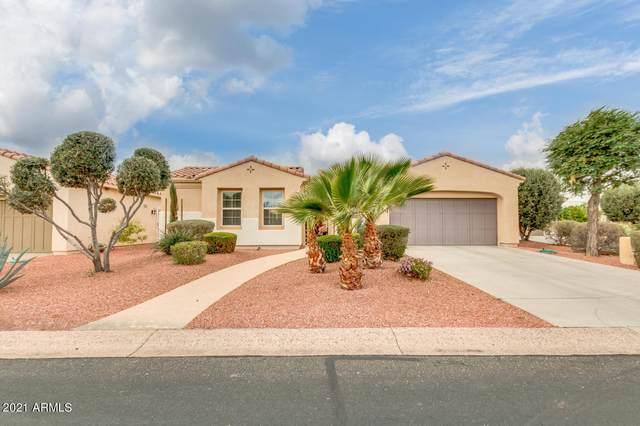 22730 N San Ramon Drive, Sun City West, AZ 85375 (MLS #6185147) :: Executive Realty Advisors