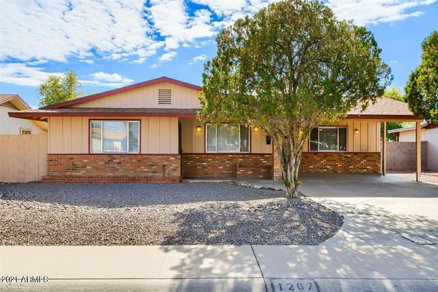 1267 W Oakland Street, Chandler, AZ 85224 (MLS #6185166) :: Keller Williams Realty Phoenix