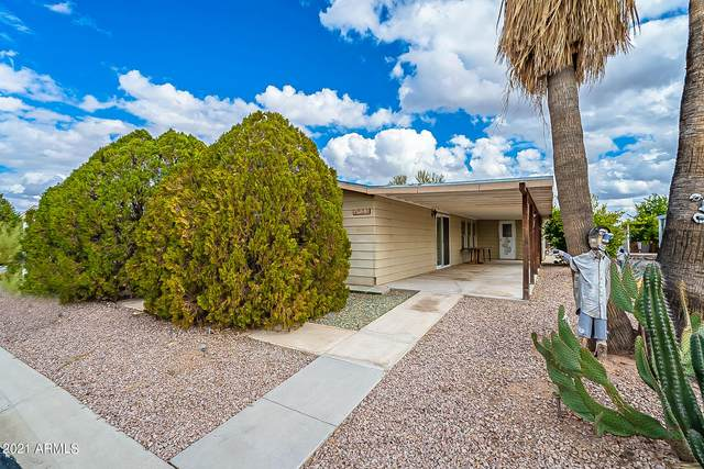 3723 N Minnesota Avenue, Florence, AZ 85132 (MLS #6185202) :: The Newman Team