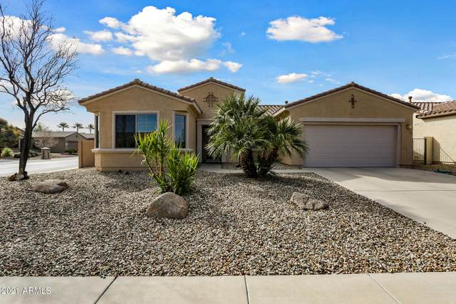 16631 W Rincon Peak Drive, Surprise, AZ 85387 (MLS #6185281) :: Devor Real Estate Associates