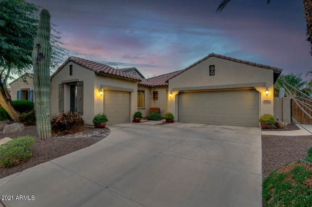 3914 E Grand Canyon Place, Chandler, AZ 85249 (MLS #6185292) :: My Home Group