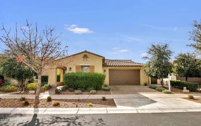 10061 E Thornbush Avenue, Mesa, AZ 85212 (MLS #6185299) :: Devor Real Estate Associates