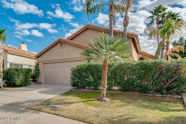 10325 E Celtic Drive, Scottsdale, AZ 85260 (MLS #6185322) :: The W Group