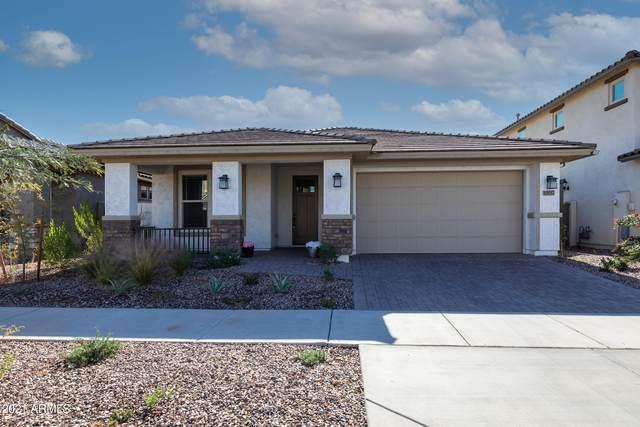 10017 E Gamma Avenue, Mesa, AZ 85212 (MLS #6185325) :: My Home Group