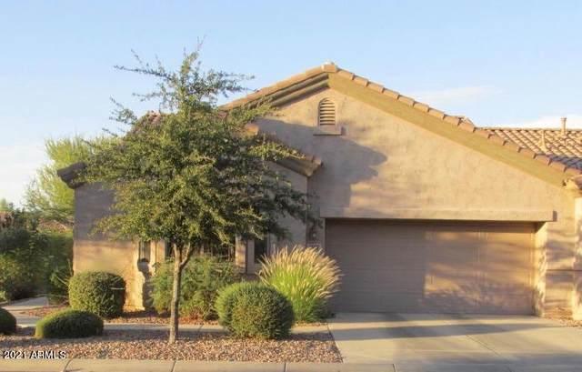1568 E Earl Drive, Casa Grande, AZ 85122 (MLS #6185344) :: My Home Group