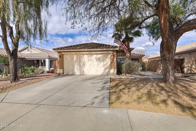 10110 E Osage Avenue, Mesa, AZ 85212 (MLS #6185357) :: My Home Group