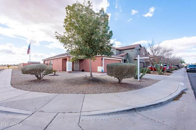35789 W Velazquez Drive, Maricopa, AZ 85138 (MLS #6185396) :: Yost Realty Group at RE/MAX Casa Grande