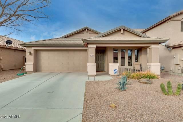 21356 N Van Loo Drive, Maricopa, AZ 85138 (MLS #6185407) :: The Kurek Group