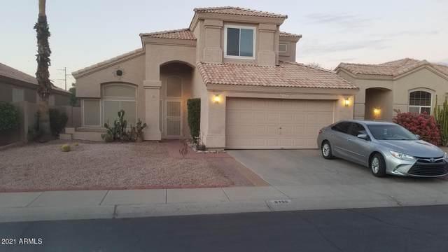 6450 W Megan Court, Chandler, AZ 85226 (MLS #6185468) :: The Ellens Team