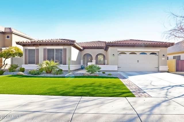 6699 S Balboa Drive, Gilbert, AZ 85298 (MLS #6185470) :: The Carin Nguyen Team