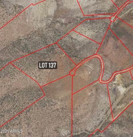 0000 W Copper Canyon Drive, Globe, AZ 85501 (MLS #6185484) :: Scott Gaertner Group