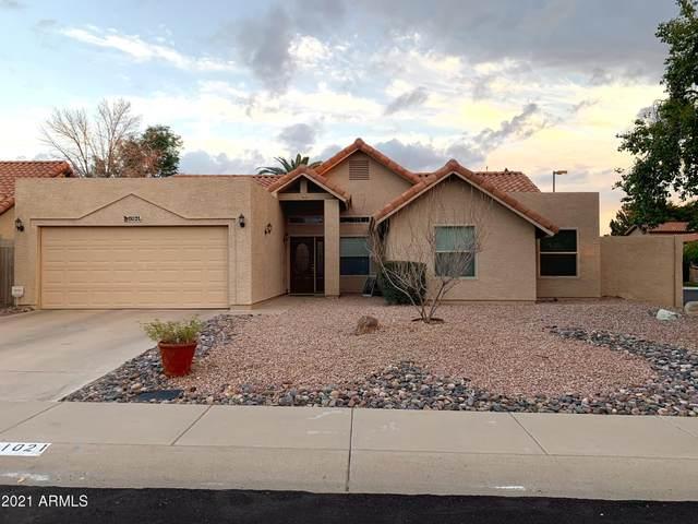 11021 E Poinsettia Drive, Scottsdale, AZ 85259 (MLS #6185594) :: The Carin Nguyen Team