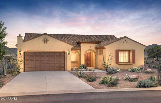 19097 N 259TH Avenue, Buckeye, AZ 85396 (MLS #6185615) :: The W Group