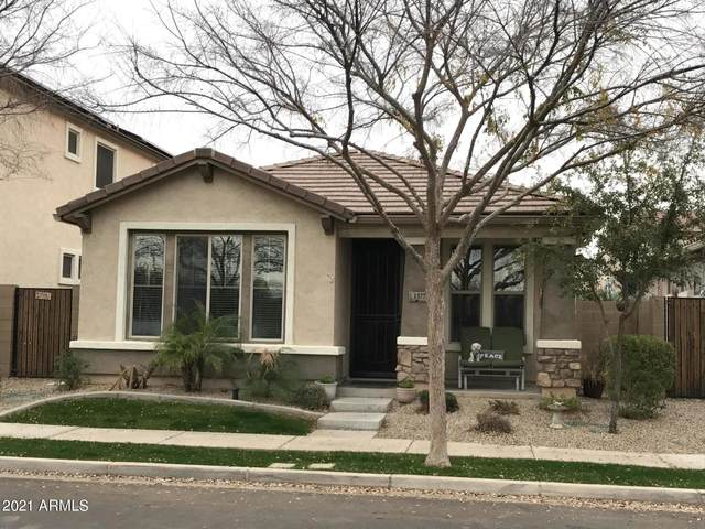 1377 S Chaparral Boulevard, Gilbert, AZ 85296 (MLS #6185640) :: Kepple Real Estate Group