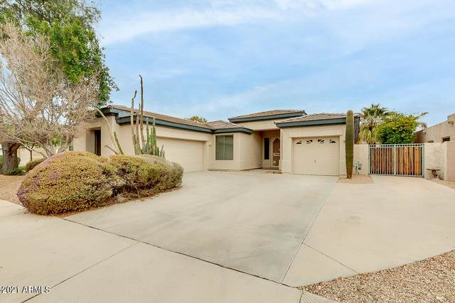 14550 W Hillside Street, Goodyear, AZ 85395 (MLS #6185657) :: The Helping Hands Team