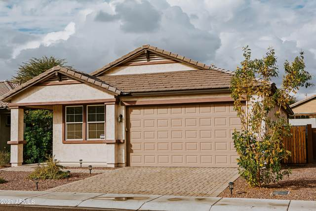 2236 W Betty Elyse Lane, Phoenix, AZ 85023 (MLS #6185740) :: Dave Fernandez Team | HomeSmart