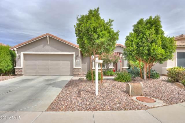 43924 W Snow Drive, Maricopa, AZ 85138 (MLS #6185753) :: Long Realty West Valley