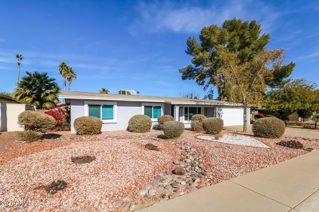 3016 E Dahlia Drive, Phoenix, AZ 85032 (MLS #6185767) :: Budwig Team | Realty ONE Group