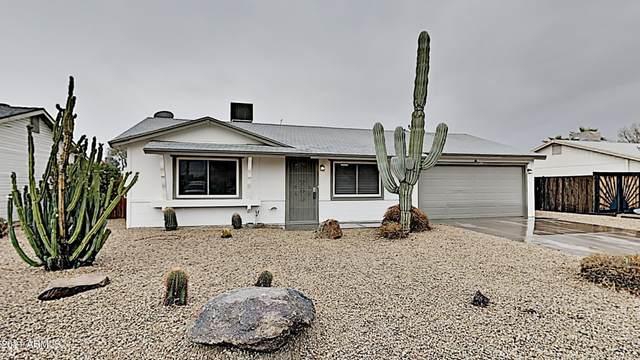4055 E Hearn Road, Phoenix, AZ 85032 (MLS #6185795) :: Scott Gaertner Group