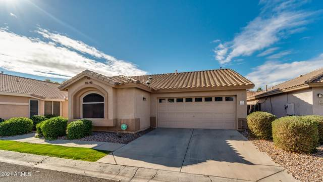 1632 N Serina, Mesa, AZ 85205 (MLS #6185838) :: Scott Gaertner Group