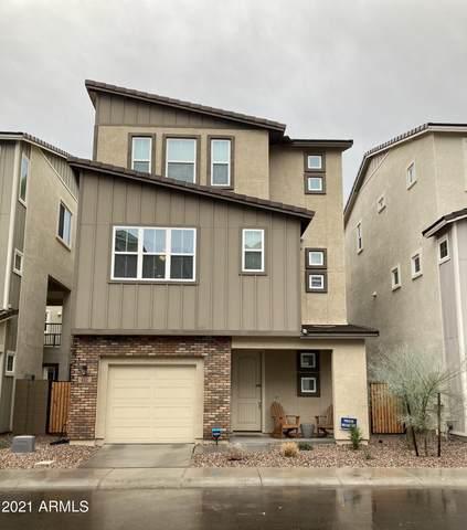 612 W Flintlock Way, Chandler, AZ 85286 (MLS #6185857) :: My Home Group