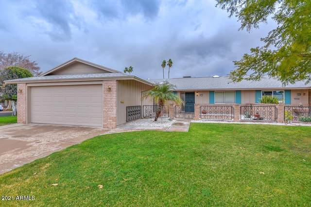 10217 W Pineridge Drive, Sun City, AZ 85351 (MLS #6185952) :: Arizona 1 Real Estate Team