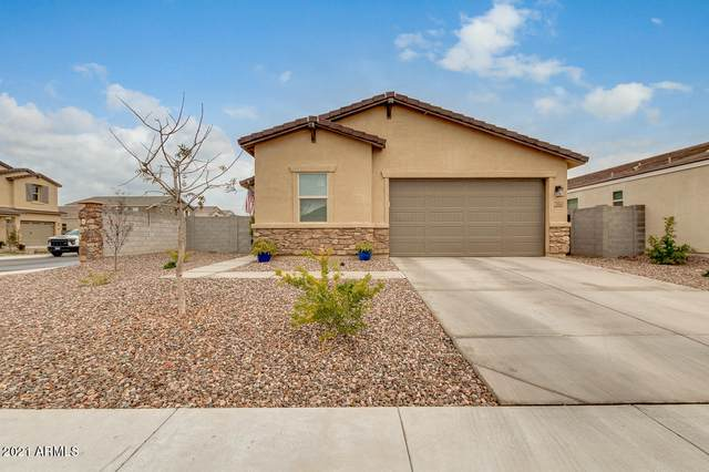 396 W Chapawee Trail, San Tan Valley, AZ 85140 (MLS #6186077) :: The Everest Team at eXp Realty
