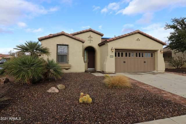 13044 W Fetlock Trail, Peoria, AZ 85383 (MLS #6186128) :: The Riddle Group