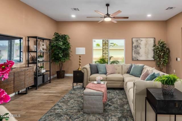 11017 W Granada Drive, Sun City, AZ 85373 (MLS #6186143) :: Dijkstra & Co.