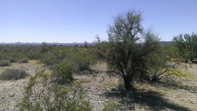 34765 S Nine Irons Road, Wickenburg, AZ 85390 (MLS #6186234) :: BVO Luxury Group