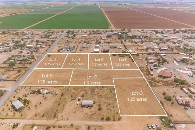 4394 E Vista Grande, San Tan Valley, AZ 85140 (MLS #6186240) :: The AZ Performance PLUS+ Team