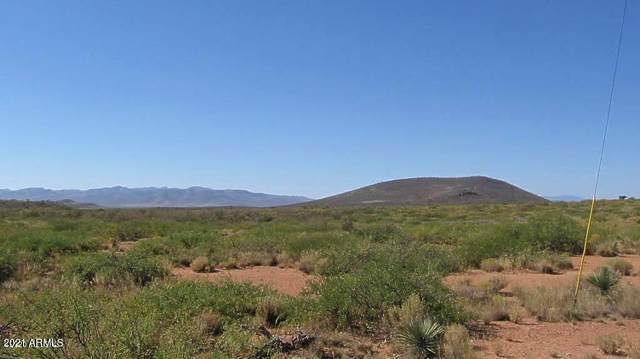 36 Ac High Lonesome Road, Elfrida, AZ 85610 (MLS #6186267) :: The Laughton Team