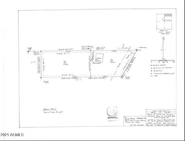 8667 E Rocksprings Road, San Simon, AZ 85632 (MLS #6186288) :: Yost Realty Group at RE/MAX Casa Grande
