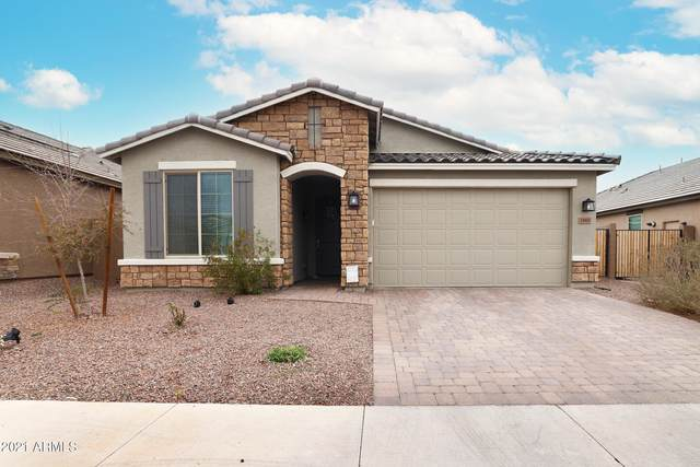 1960 W Emrie Avenue, Queen Creek, AZ 85142 (MLS #6186329) :: Power Realty Group Model Home Center