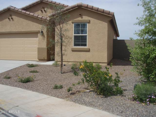 18960 N Lariat Road, Maricopa, AZ 85138 (MLS #6186424) :: Keller Williams Realty Phoenix