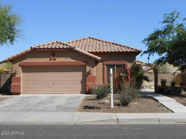 4886 E Thunderbird Drive, Chandler, AZ 85249 (MLS #6186566) :: The Carin Nguyen Team