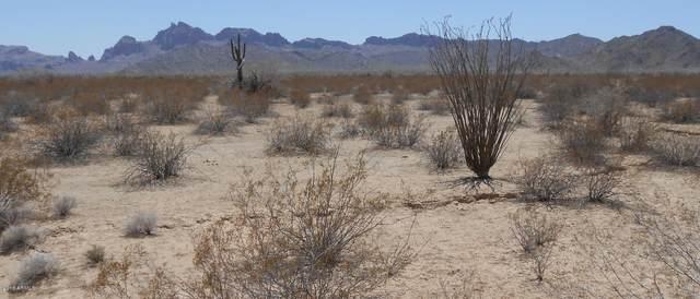 56344 W Centennial Road, Tonopah, AZ 85354 (MLS #6186579) :: Keller Williams Realty Phoenix