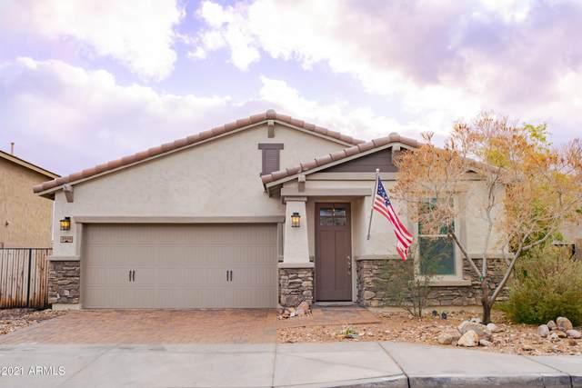 2959 W Thorn Tree Drive, Phoenix, AZ 85085 (MLS #6186987) :: Yost Realty Group at RE/MAX Casa Grande