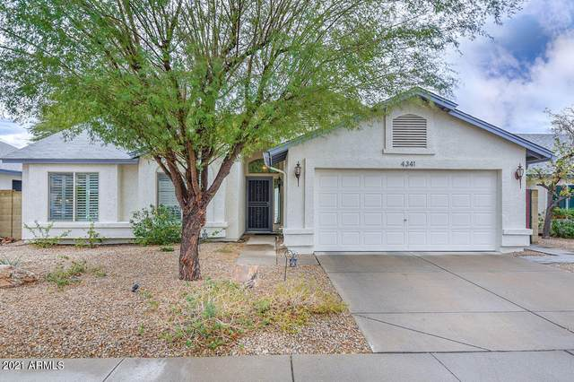 4341 W Marco Polo Road, Glendale, AZ 85308 (MLS #6187019) :: Yost Realty Group at RE/MAX Casa Grande