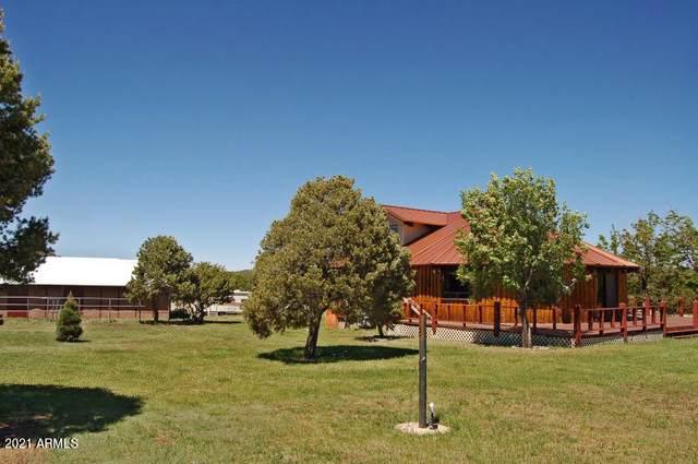 487 County Road 3144, Show Low, AZ 85901 (MLS #6187070) :: TIBBS Realty