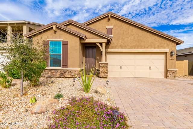 2910 W Laredo Lane, Phoenix, AZ 85085 (MLS #6187237) :: Yost Realty Group at RE/MAX Casa Grande