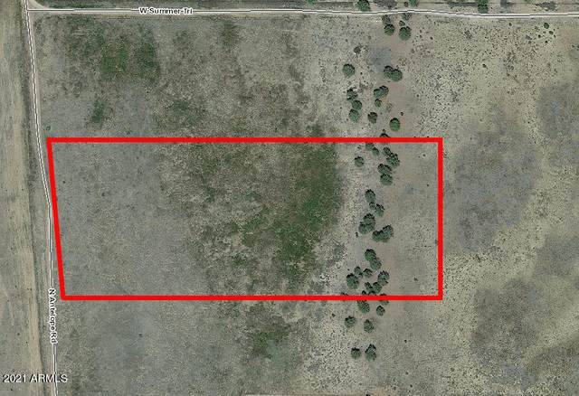 0 N Antelope Lane, Paulden, AZ 86334 (MLS #6187594) :: Dave Fernandez Team | HomeSmart