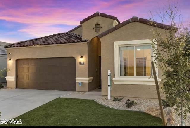 31070 W Whitton Avenue, Buckeye, AZ 85396 (MLS #6187718) :: Yost Realty Group at RE/MAX Casa Grande